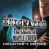 Download Enigmatis: The Ghosts of Maple Creek Collector's Edition game