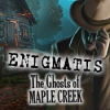 Download Enigmatis: The Ghosts of Maple Creek game