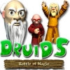 Download Druids - Battle of Magic game