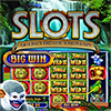 Download WMS Slots: Quest for the Fountain game